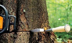 Ручной инструмент и принадлежности для работы в лесу STIHL
