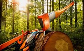 Инструмент для работы в лесу STIHL